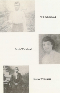 The Whitehead Family  circa 1872 - 1935